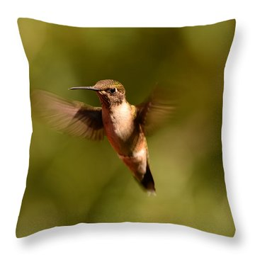 Hurry Up And Take My Picture Throw Pillow