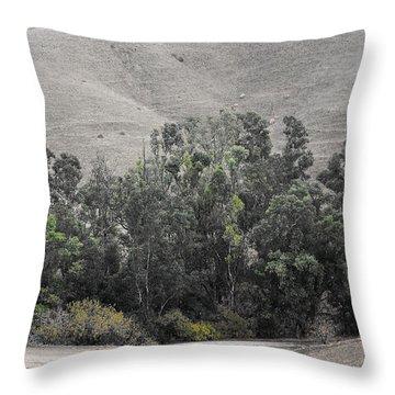 Throw Pillow featuring the photograph Hurst At Hillock  by Viktor Savchenko