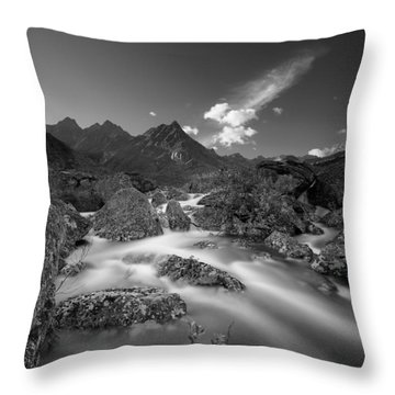 Hush Throw Pillow by Ed Boudreau