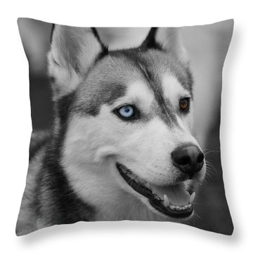Throw Pillow featuring the photograph Husky Portrait by Vicki Spindler