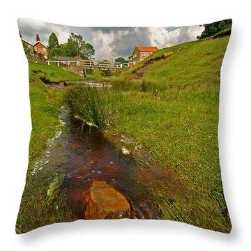 Hutton Beck  Throw Pillow
