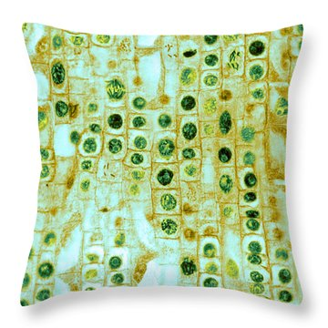 Hyacinth Root Tip Cells Throw Pillow
