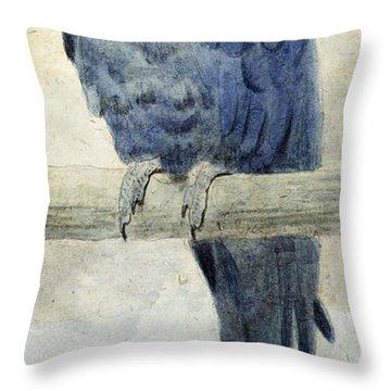 Hyacinthine Macaw Throw Pillow by Henry Stacey Marks