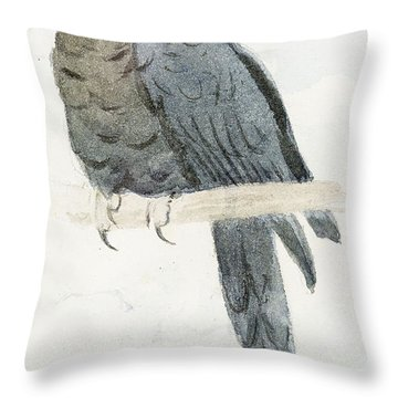 Hyancinth Macaw Throw Pillow by Henry Stacey Marks