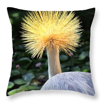 Throw Pillow featuring the photograph Hyatt 22 by Dawn Eshelman