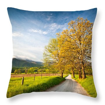 Hyatt Lane Cade's Cove Great Smoky Mountains National Park Throw Pillow