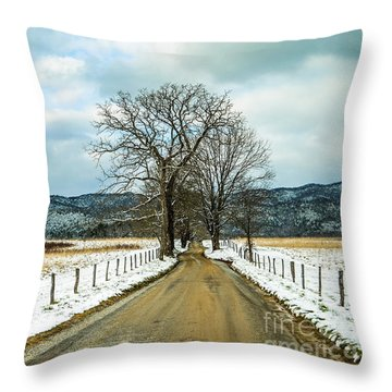 Hyatt Lane In Snow Throw Pillow