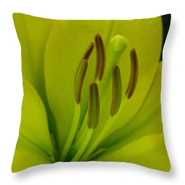 Hybrid Lily Named Trebbiano Throw Pillow by J McCombie