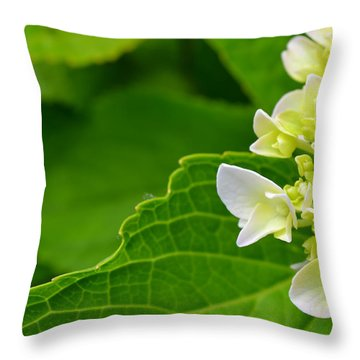 Hydrangea #1 Throw Pillow