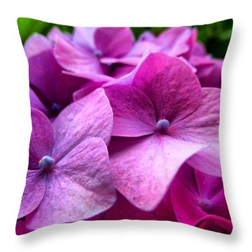 Hydrangea Bliss Throw Pillow