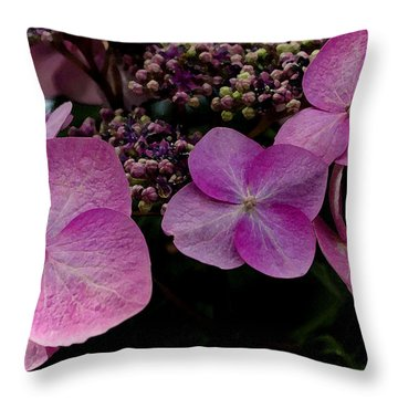 Throw Pillow featuring the photograph Hydrangea Flowers  by James C Thomas