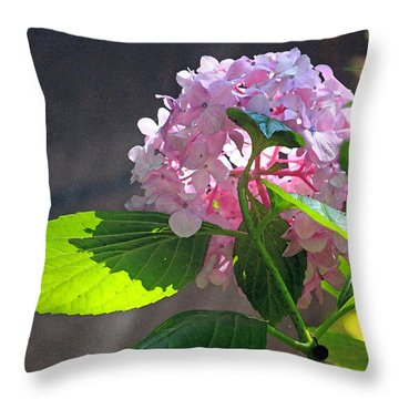 Hydrangea Heaven Throw Pillow by Suzanne Gaff