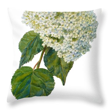 Hydrangea Aborescens Throw Pillow