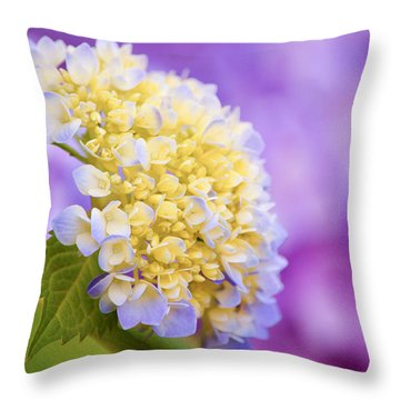 Hydrangea On Purple Throw Pillow by Parker Cunningham