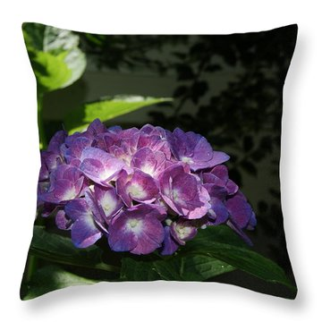 Hydrangea Season Throw Pillow