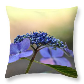 Hydrangea Umbrella Throw Pillow by Larry Bishop