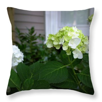 Hydrangeas IIi Throw Pillow