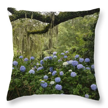 Hydrangeas In The Village  Throw Pillow by Cheryl McClure