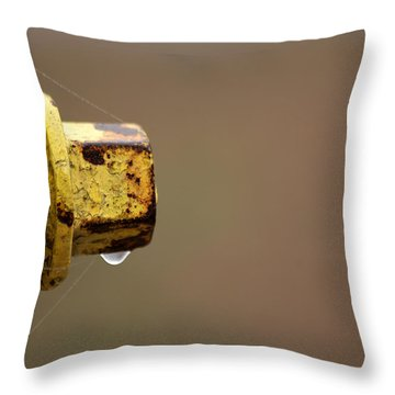 Hydrant Drip Throw Pillow by Karol Livote