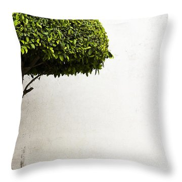 Hypnotic Tree Throw Pillow