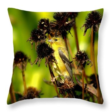 I Am A Flower Stalk Do You See Me Throw Pillow