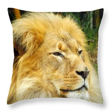 I Am King Throw Pillow by Clare Bevan