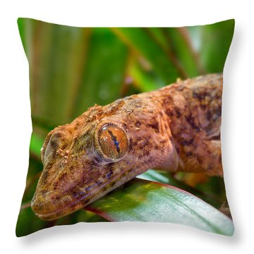 I Am Looking At You Sir Madam Throw Pillow