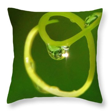 Throw Pillow featuring the photograph I Am Oz by Charlotte Schafer