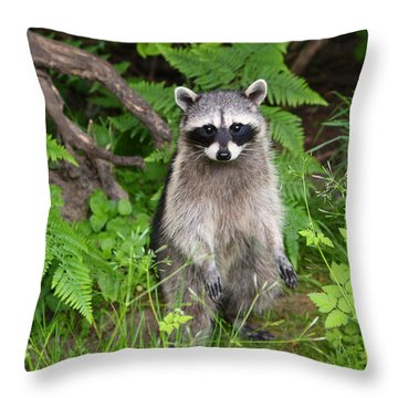 I Am Standing Up Straight Throw Pillow by Kym Backland