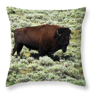 I Am The King Of This Meadow Throw Pillow