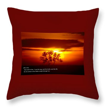 I Am The Way John 14-6 Throw Pillow by Jeff Swan