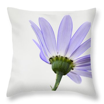 I Can Almost See Right Through You Throw Pillow
