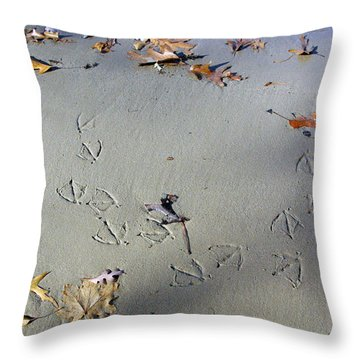 I Changed My Mind Throw Pillow by Brian Wallace