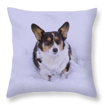 I Do Not Like Snow Throw Pillow