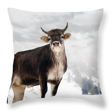I Don't Like Snow Throw Pillow