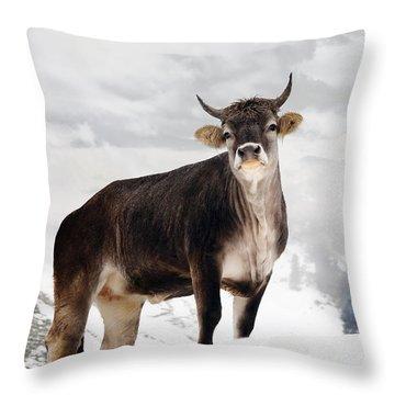 I Don't Like Snow Throw Pillow