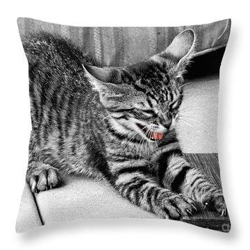 I Don't Wanna Throw Pillow