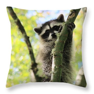 I Don't Want To Come Down Throw Pillow