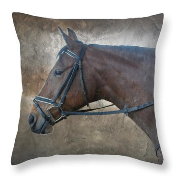 I Dreamt Of Thee Throw Pillow by Renee Forth-Fukumoto