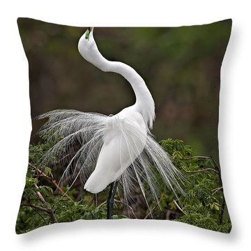 I Feel Pretty Throw Pillow by Susan Candelario