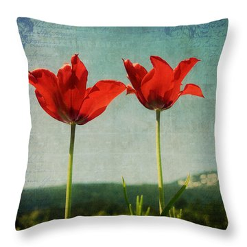I Go To The Hills When My Heart Is Lonely Throw Pillow by Lisa Knechtel