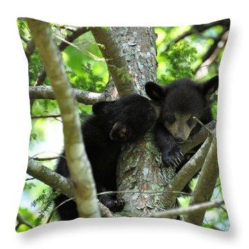 I Got A Secret Throw Pillow by Todd Hostetter