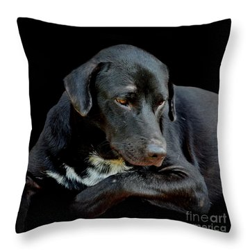 Throw Pillow featuring the photograph I Got The Blues by Michelle Meenawong