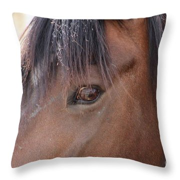 I Have My Eye On You Throw Pillow by Fiona Kennard