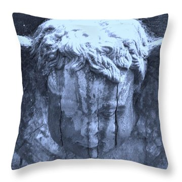 I Have Watched For A Long Time... Throw Pillow