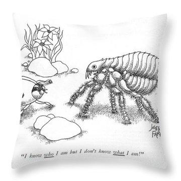 I Know Who I Am But I Don't Know What L Am! Throw Pillow