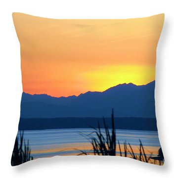 Throw Pillow featuring the photograph I Like To Color by Chris Anderson