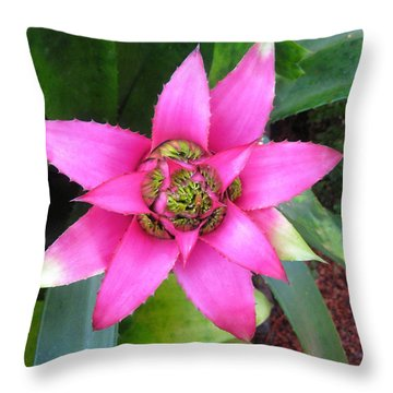 Pink And Beautiful  Throw Pillow by Claudia Ellis