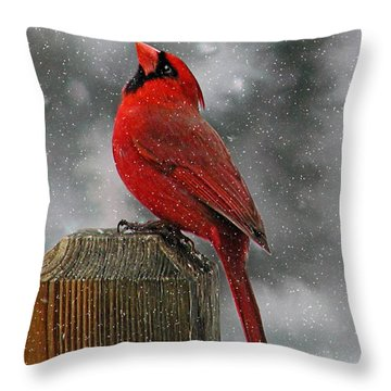 I Love Snow..... Throw Pillow by Judy  Johnson