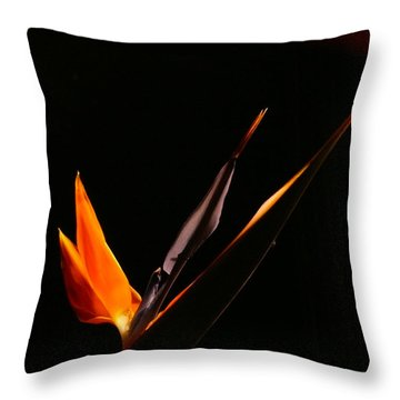 Throw Pillow featuring the photograph I Love You by Evelyn Tambour